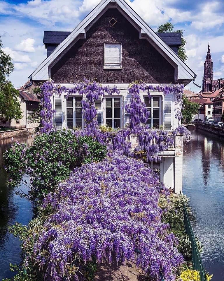 [Image: france_river_home.jpg]